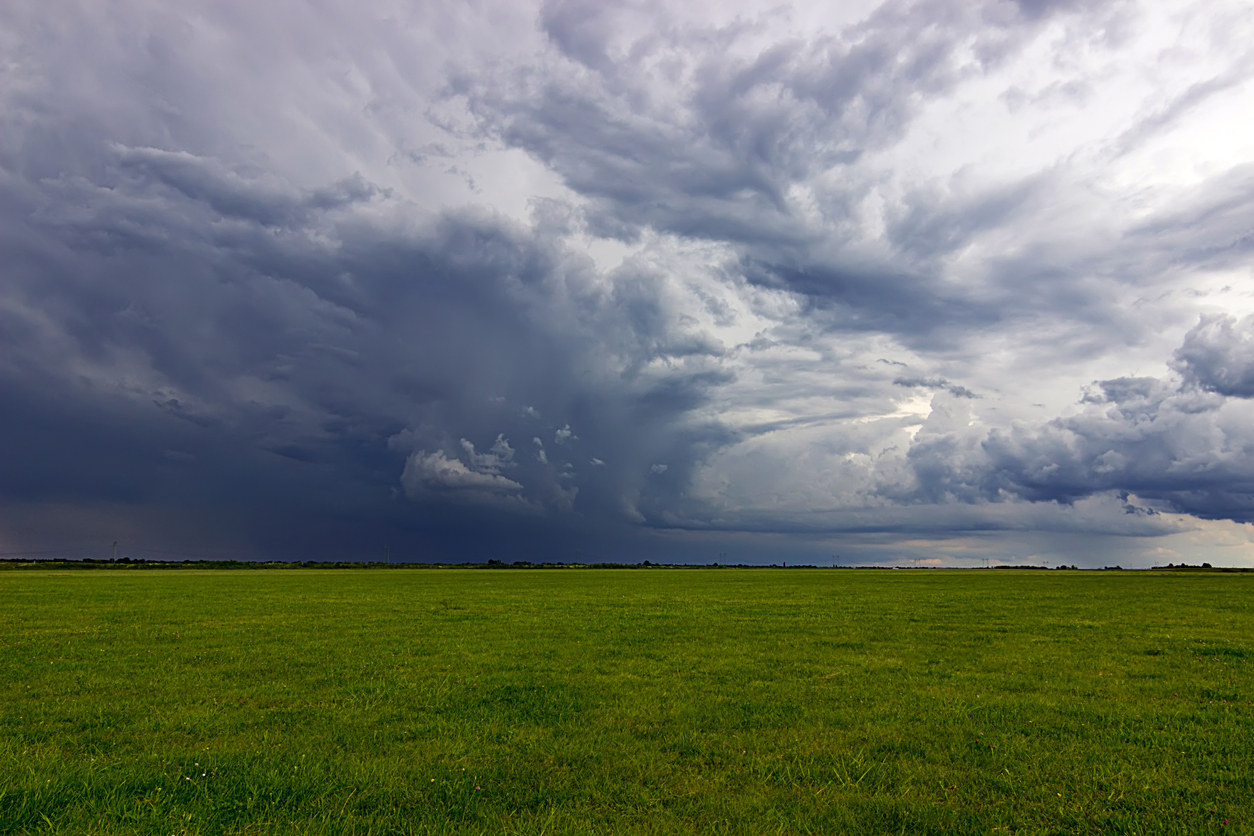 Summer Storm clouds above meadow with green grass
